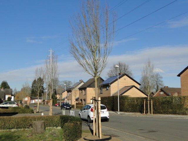 Eerste aanplant klimaatbomen