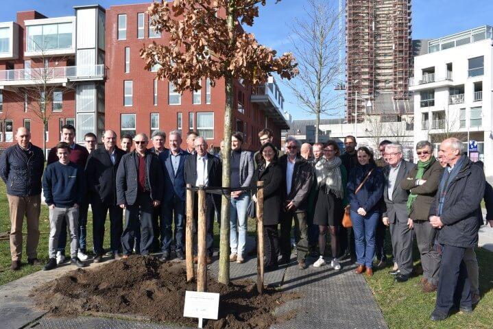 Oudenaarde plant 218 bomen plus 1 klimaatboom