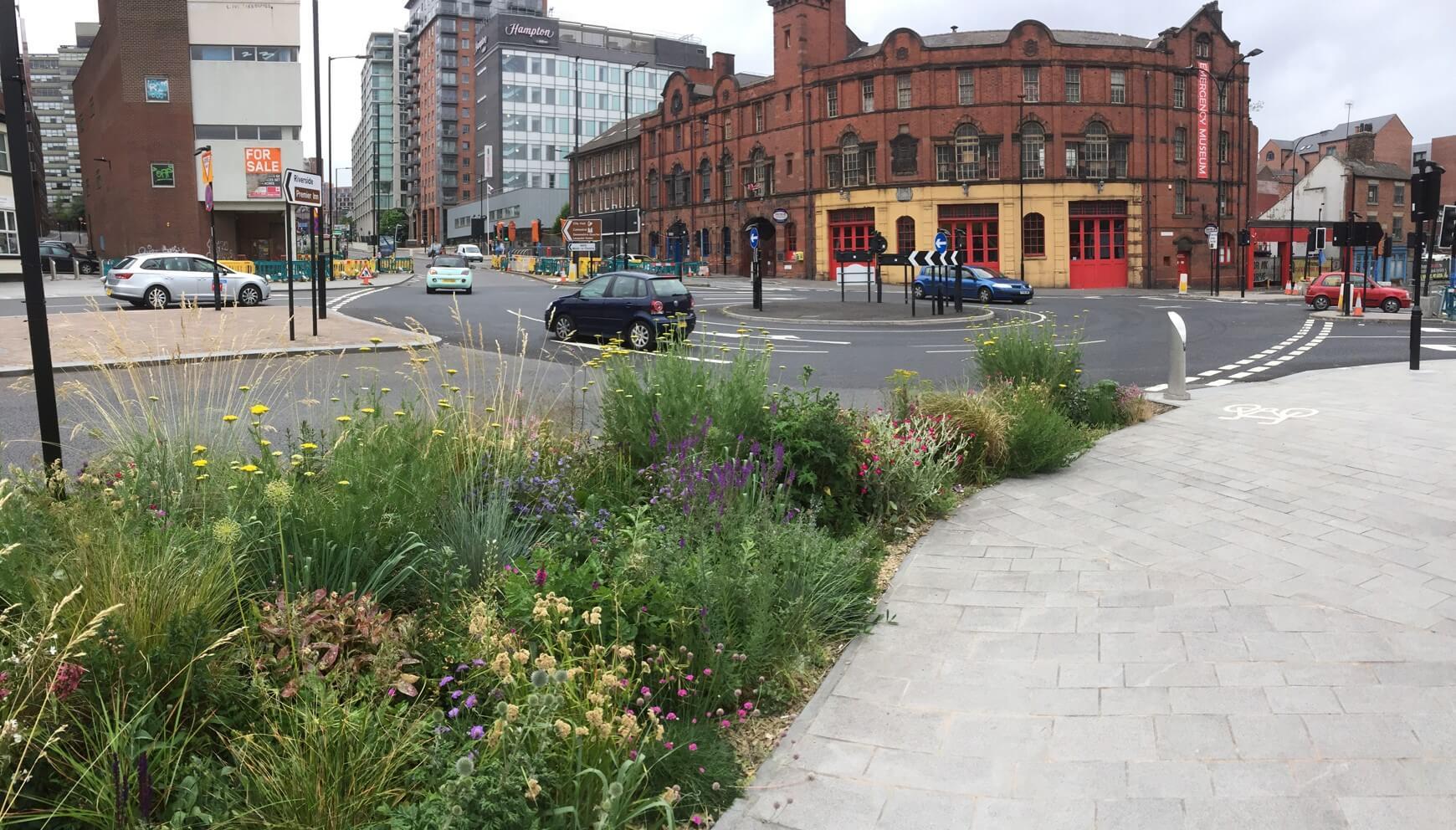 Bezinkingsbekken met patchwork-beplanting in het midden van de stad (Sheffield, Engeland)