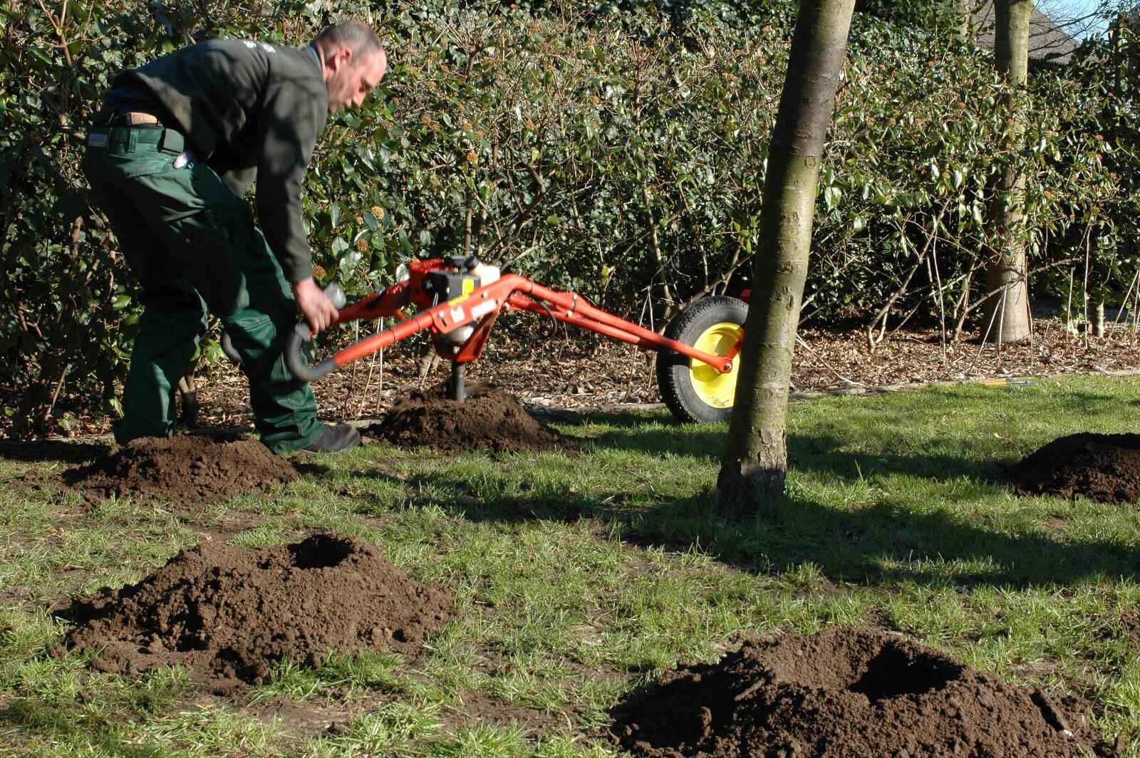 Revitalisatie van bomen: boorgaten