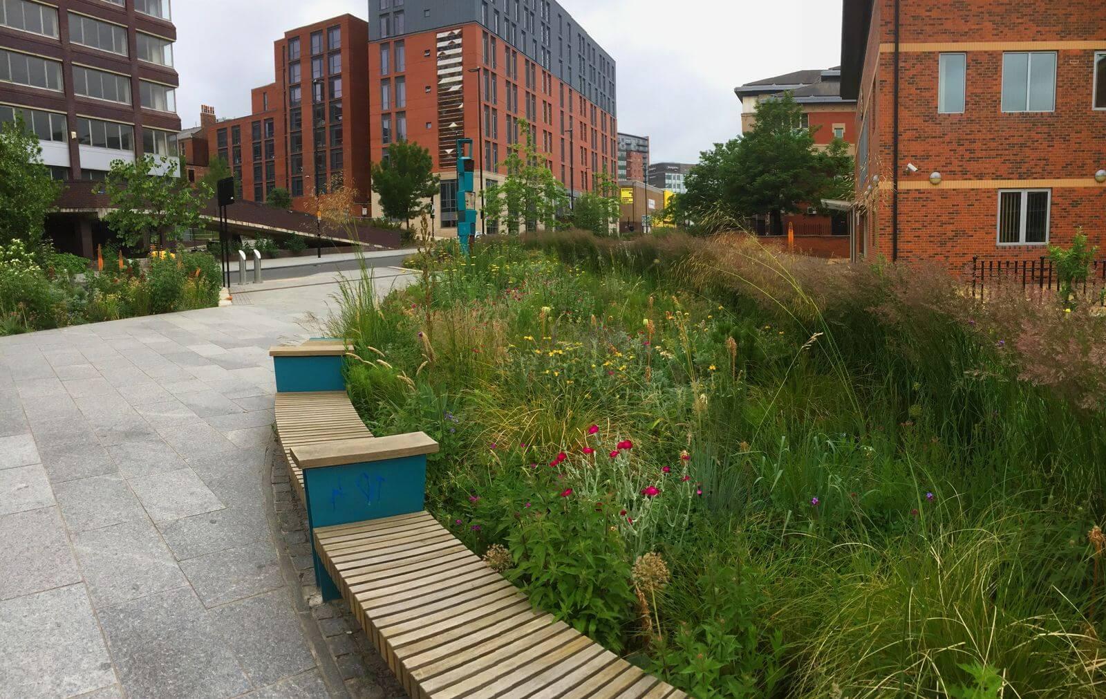In Groot-Brittanië zijn divers beplante regentuinen in steden alsmaar meer zichtbaar aan het worden