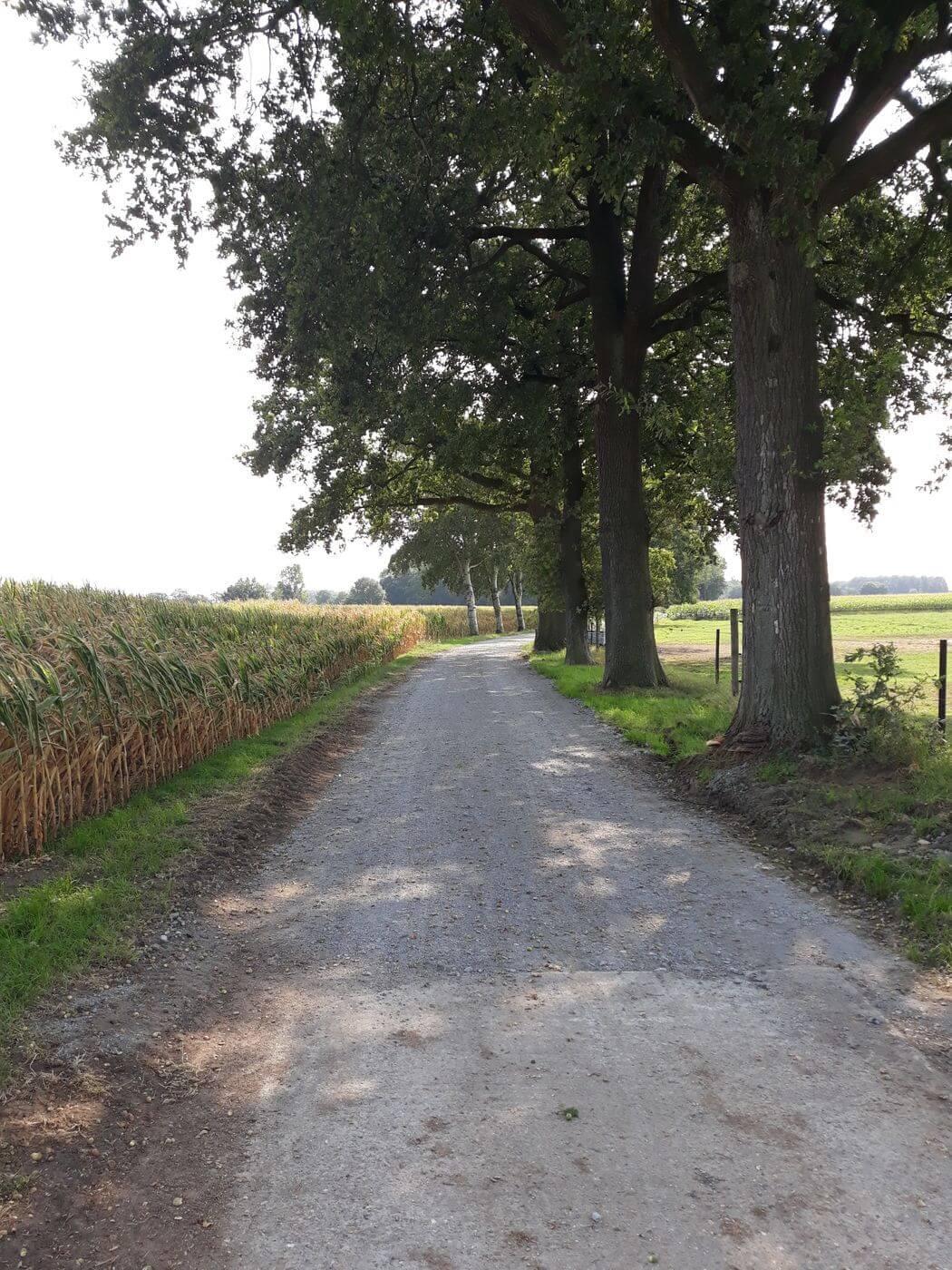 Riddersberg in Herentals