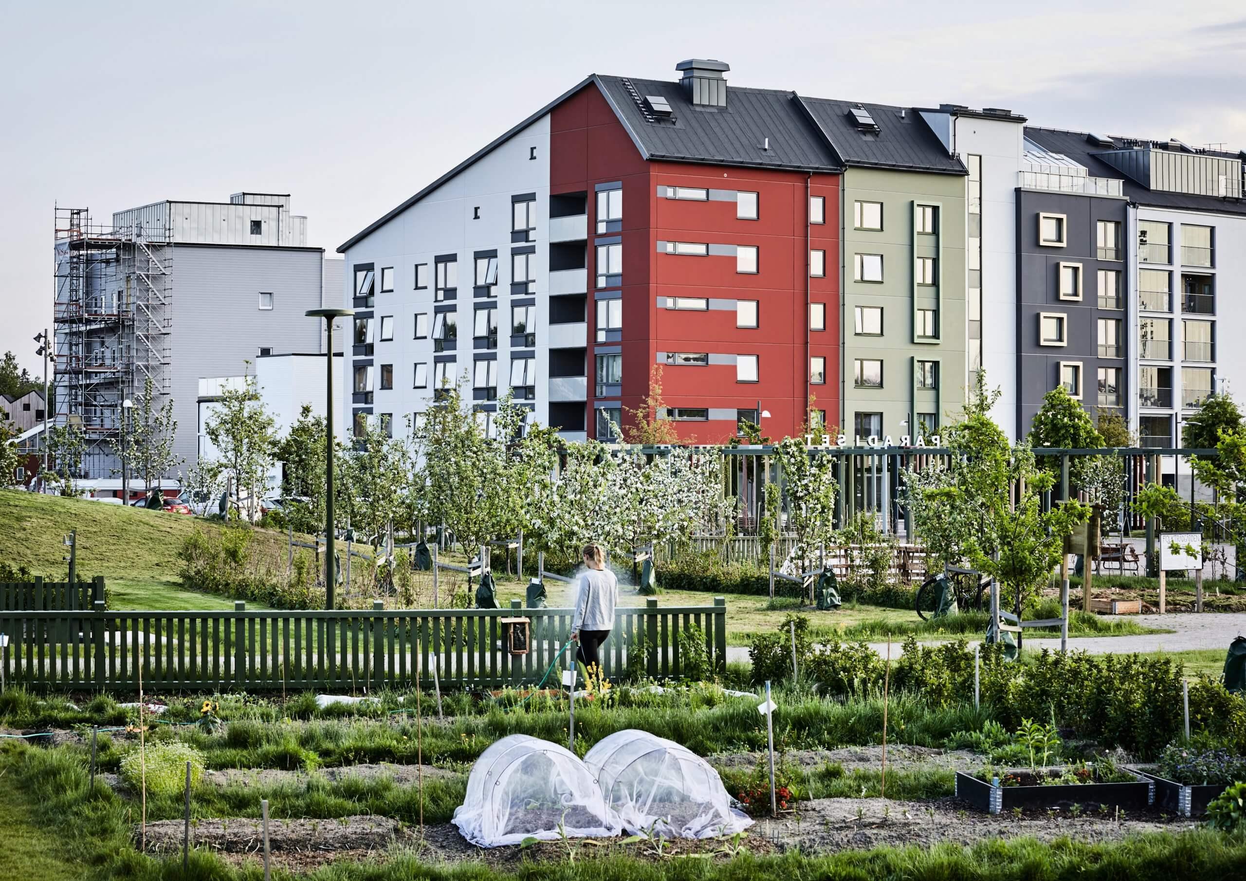 Paradiset i Vallastaden, Linköping är vinnare av Landskapsarkitekturpriset 2020. Foto: Måns Berg